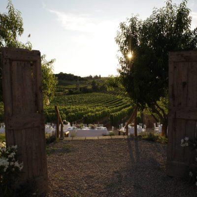 ingresso san donnino winery